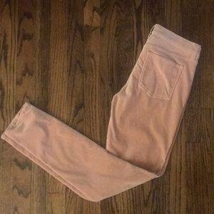 J Crew velvet pale pants